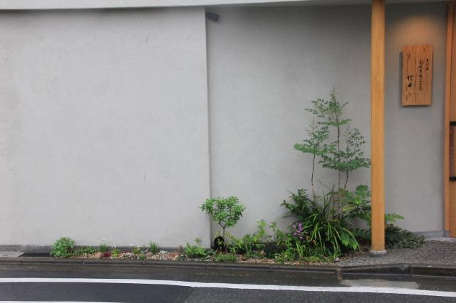 久我原 高級角食三日月 村井 様の店舗植栽5月中旬の景色