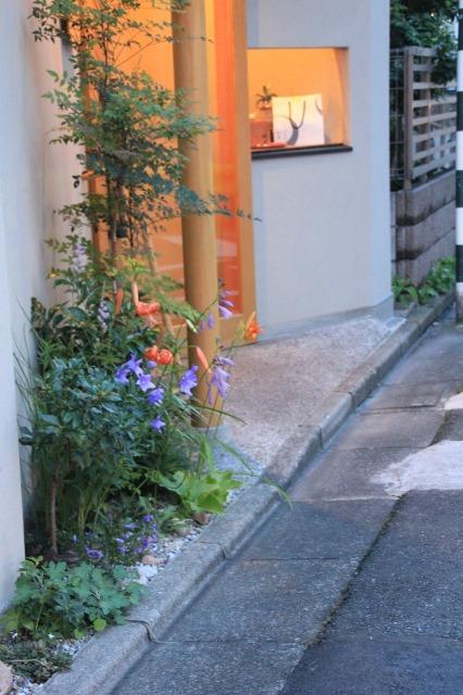 久我原 高級角食三日月 村井 様の店舗植栽7月22日午後6時半頃の景色その3